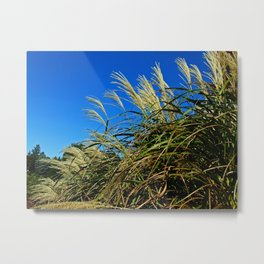 Finding Rhythm Metal Print