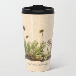 Antique Moss Lithograph Travel Mug