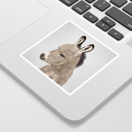 Donkey - Colorful Sticker