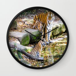 Lessons Of Life Mother Tiger And Cubs Wall Clock