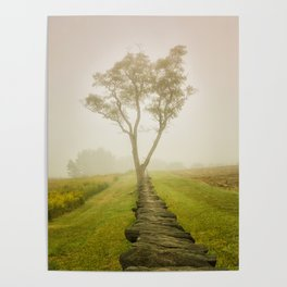 Calming Morning Landscape Photograph Tree & Fog Poster