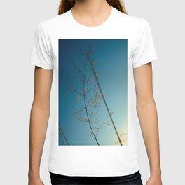 flower photography by Dan Musat T-shirt