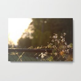 Might be on the fence about this... Metal Print