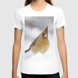 Female Cardinal in The Snow T-shirt