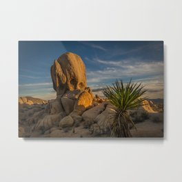 Joshua Tree Rock Formation Metal Print