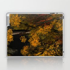 Autumn Leaves and Stream Laptop & iPad Skin