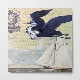 Coastal Bird 4 Metal Print