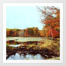 Beaver Pond Art Print