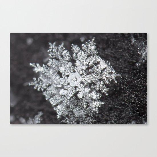 Sowflake closeup #4 Canvas Print