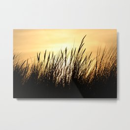 Beachgrass at Sunset Metal Print