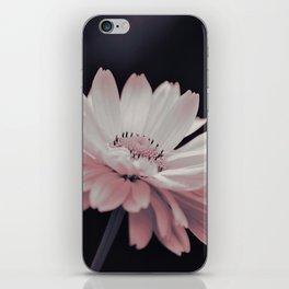 #38 iPhone Skin