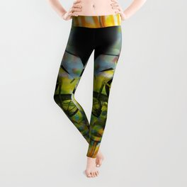 BUFFALO FACTORY  Tricycles Leggings