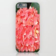 ORANGE BOUQUET Slim Case iPhone 6s