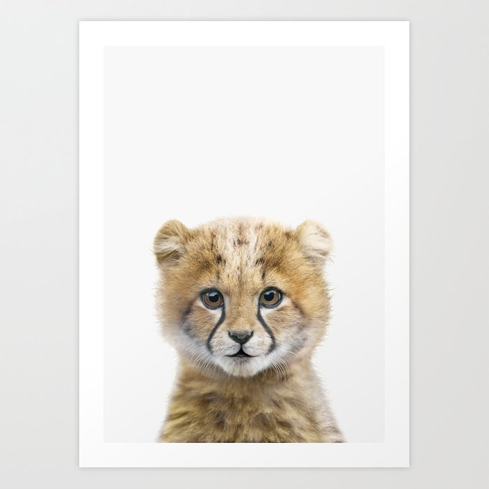 Cheetah Cub Kunstdrucke