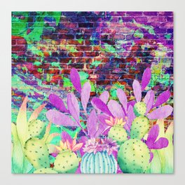 cactus wall Canvas Print