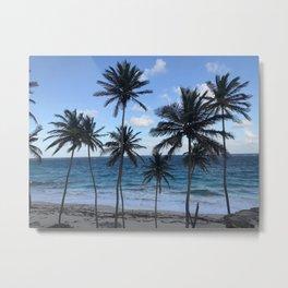 Barbados Beach with Tall Palm Trees Metal Print