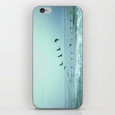 Aerodynamics iPhone Skin