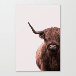 Sophie the Highland Cow Canvas Print