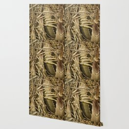 Wild Abandon Wallpaper