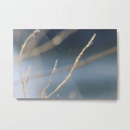 Branch Tree Bluesky Bokeh Abstract Metal Print