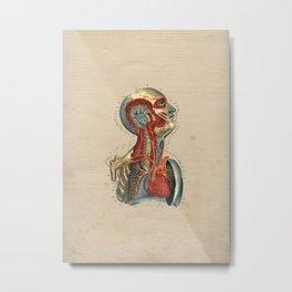Human Heart Artery Anatomy 1841 Print Metal Print