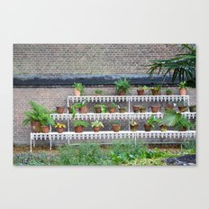 Pots and plants Canvas Print