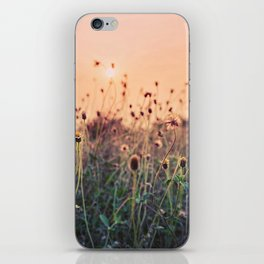 Sunset Floral Background iPhone Skin
