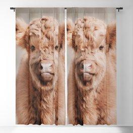 Scottish Highlander Portrait Art Print | Animal Photography | Scottish Highland Cow Baby Calf Blackout Curtain