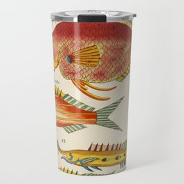 Colorful FISHES - Old French Print - Caribbean Ocean Sea Underwater Fish Wall Art Travel Mug