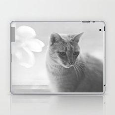 Winford Kitty Laptop & iPad Skin