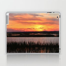 Sky Over The Marsh Laptop & iPad Skin