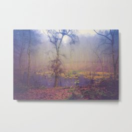 SWAMPY FOREST 3 (everyday 05.01.2017) Metal Print