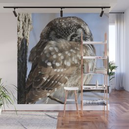 Captivated Wall Mural