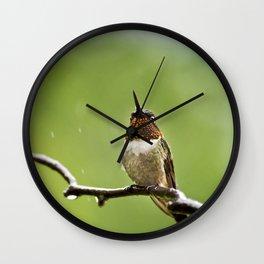 Ruby Throated Hummingbird II Wall Clock