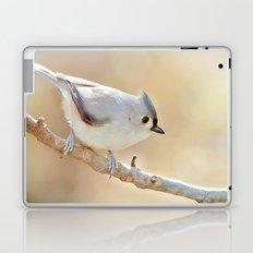 Sunlit Titmouse Laptop & iPad Skin