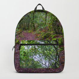 The road to nature Backpack