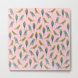 Pink Budgies Metal Print