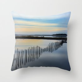Transition Zone Throw Pillow
