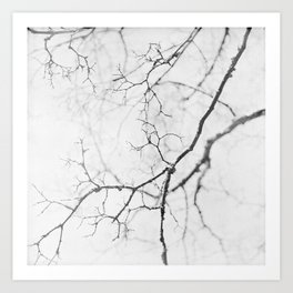 impression of a tree in black and white Art Print