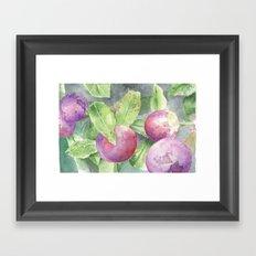 Grape Framed Art Print