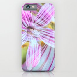 Purisima Tree Mallow Flower Abstract iPhone Case