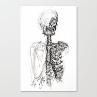anatomy Canvas Prints featuring Anatomy  by BunnyBrush