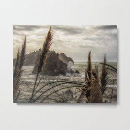 Blown Blow Hole in Trinidad California Ocean photograph Metal Print