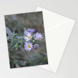 Purple Paths Stationery Cards
