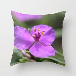 Virginia spiderwort (Purple tangle flower) Throw Pillow