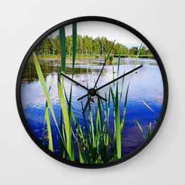 Duck Pond Wall Clock
