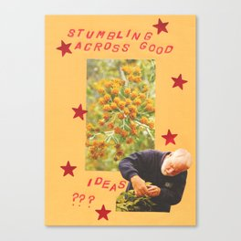 stumbling across good ideas Canvas Print