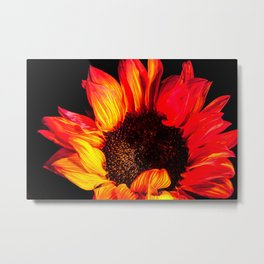 Burst of flames Metal Print
