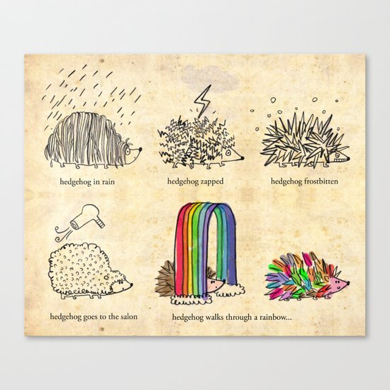 hedgehog goes rainbow Canvas Print