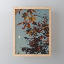 Autumn Moon Framed Mini Art Print